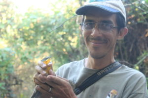 Luis Morales of San Pancho Bird Observatory with Yellow-breasted Chat caught in Nayarit, Mexico © C. Bishop