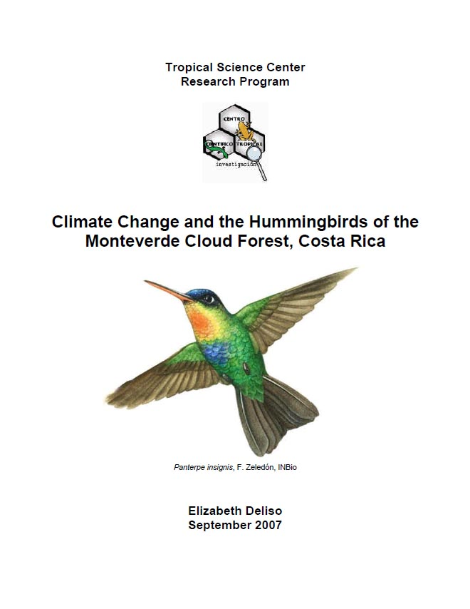 Climate Change And The Hummingbirds Of The Monteverde Cloud Forest  Costa Rica