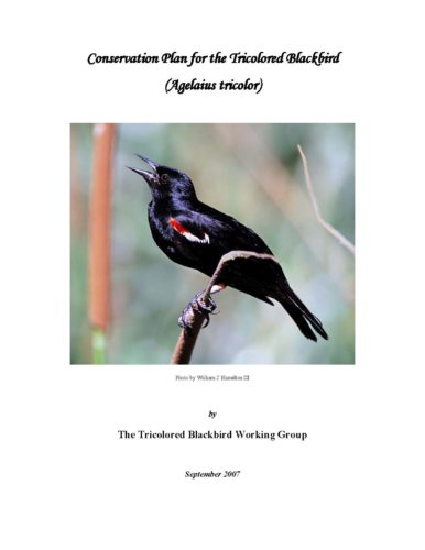 Cover of Conservation Plan for the Tricolored Blackbird (2007)