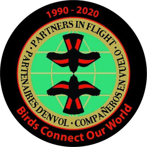 PIF 30th Anniversary logo design