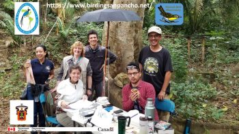 Picture of the bird banding team from San Pancho Bird Observatory in Mexico